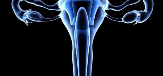 виды кисты яичника у женщин